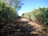 11051 Upper Previtali Road - Photo 12