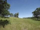 0-3T1303 Arbolada Drive - Photo 10