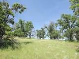 0-3T1303 Arbolada Drive - Photo 11
