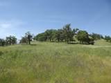 0-3T1303 Arbolada Drive - Photo 4