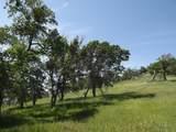 0-3T1303 Arbolada Drive - Photo 5