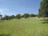 0-3T1303 Arbolada Drive - Photo 6