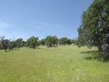 0-3T1303 Arbolada Drive - Photo 7
