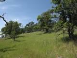 0-3T1303 Arbolada Drive - Photo 8