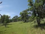 0-3T1303 Arbolada Drive - Photo 9