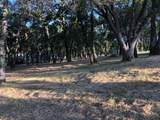 12853 Austin Forest Circle - Photo 5