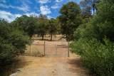 12564 Sunshine Valley Road - Photo 3