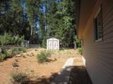 12966 Red Dog Road - Photo 15