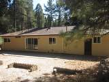 12966 Red Dog Road - Photo 3