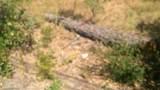 10 Omo Ranch Road - Photo 7