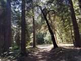 13275 Burlington Ridge Road - Photo 14