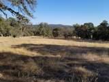 11001 Oak Mesa Drive - Photo 4