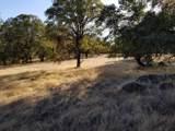 11001 Oak Mesa Drive - Photo 6