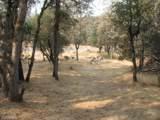 10746 Ponderosa Way - Photo 13
