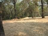 10746 Ponderosa Way - Photo 14