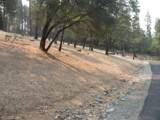 10746 Ponderosa Way - Photo 6