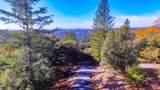 3350 Bay Leaf Drive - Photo 16