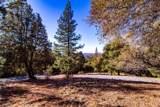3350 Bay Leaf Drive - Photo 17