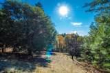 3350 Bay Leaf Drive - Photo 18