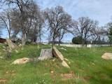 567 Live Oak Dr - Photo 8
