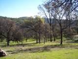 3 Deer Hollow Trail - Photo 10