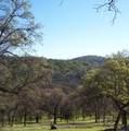 3 Deer Hollow Trail - Photo 11