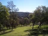 3 Deer Hollow Trail - Photo 12
