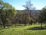 3 Deer Hollow Trail - Photo 2