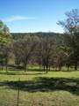 3 Deer Hollow Trail - Photo 3