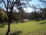 3 Deer Hollow Trail - Photo 4