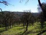 3 Deer Hollow Trail - Photo 5