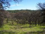 3 Deer Hollow Trail - Photo 6