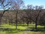 3 Deer Hollow Trail - Photo 7