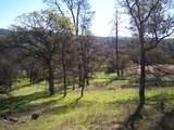3 Deer Hollow Trail - Photo 8