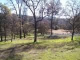 3 Deer Hollow Trail - Photo 9