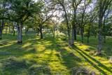 0 Blue Oak Ranch Road - Photo 11