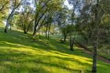 0 Blue Oak Ranch Road - Photo 16