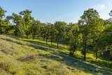 0 Blue Oak Ranch Road - Photo 17