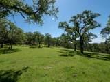 25505 Big Springs Drive - Photo 2