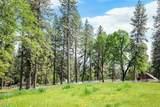 10279 Evergreen Ranch Court - Photo 8