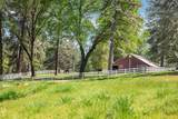 10279 Evergreen Ranch Court - Photo 9