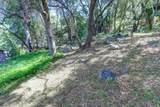 14011 Lake Wildwood Drive - Photo 43