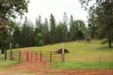 8954 Swiss Ranch Road - Photo 1