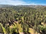 8954 Swiss Ranch Road - Photo 13