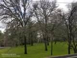 12893 Golden Trout Way - Photo 4