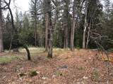 1772-Lot 307 The Point Road - Photo 3