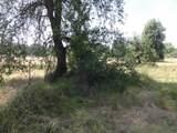 18121 Lasso Loop - Photo 12