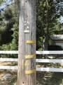 18121 Lasso Loop - Photo 21