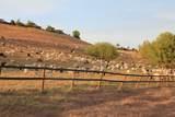 1701 Camino Verdera - Photo 12