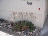 3901 Lake Road - Photo 9